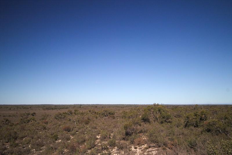 Little Desert National Park  #victoria #australia