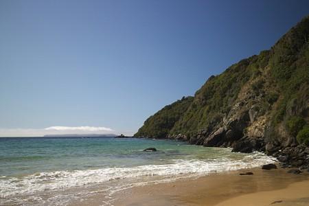 Native Island, Stewart Island, New Zealand